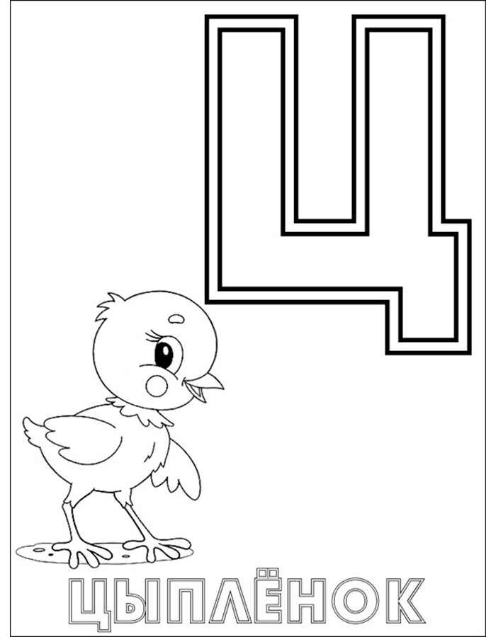 Азбука Ц с цыплёнком