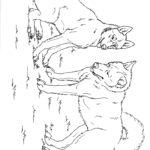 Раскраска две собаки