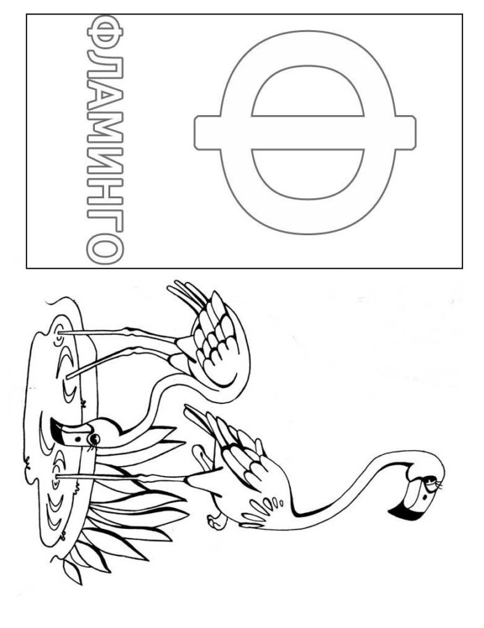 "Буква ""Ф"" фламинго"