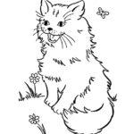 Раскраска пушистая кошка