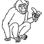 """Буква """"Ш"""" обезьяна шимпанзе"""