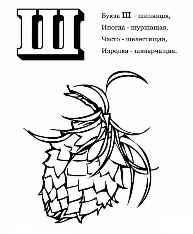 "Буква ""Ш"" стихи про шишку"