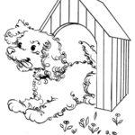 Будка для собаки раскраска для детей