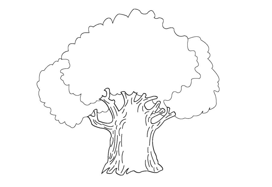 Зелёный дуб