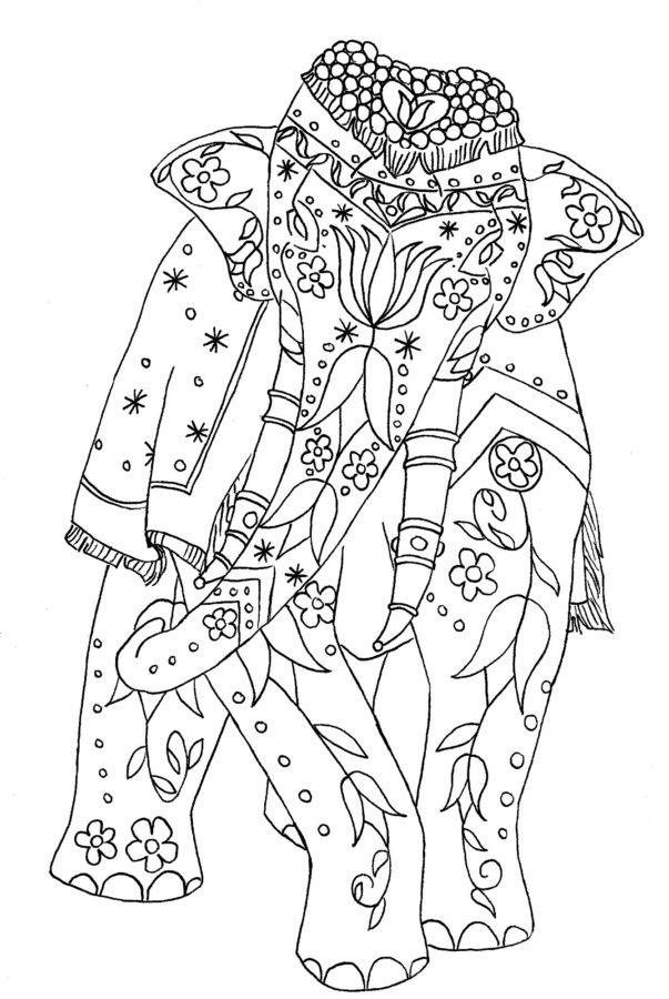 Индийский слон раскраска