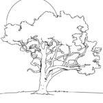 Картинки раскраски дуба