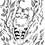 Кошка на дереве раскраска
