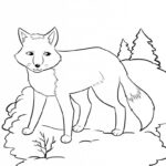 Лиса в лесу раскраски