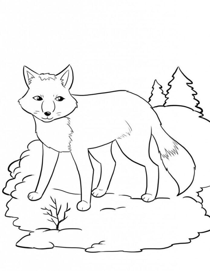Раскраска лиса в лесу