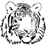 Раскраска морда тигра