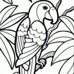 Попугай на ветке раскраска