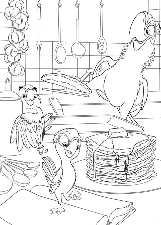 Раскраска попугай Рио