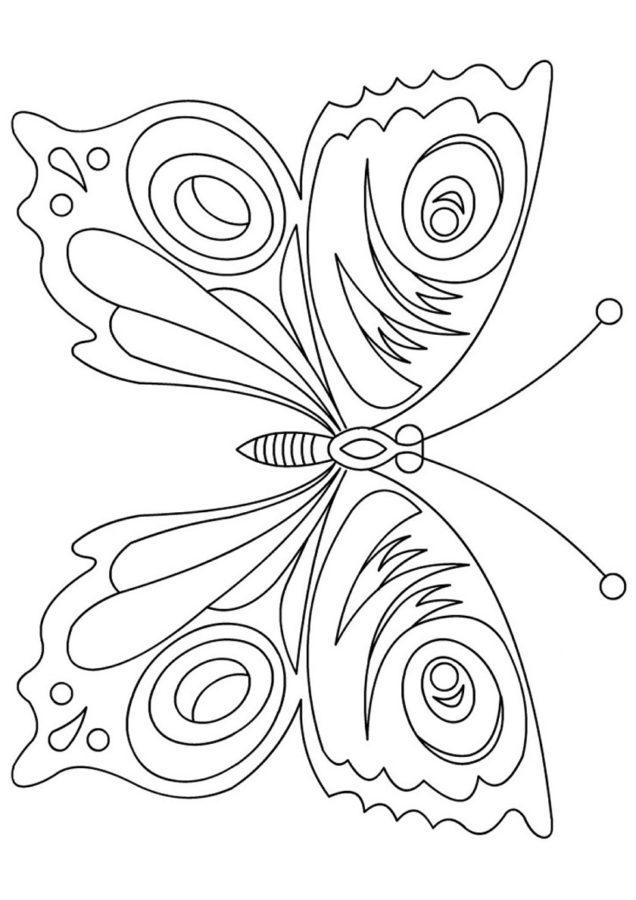 Раскраска бабочка павлиний глаз