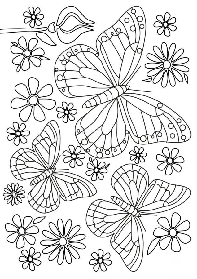Раскраска лето бабочки