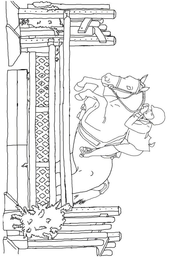 Раскраска лошадь конкур - конный спорт