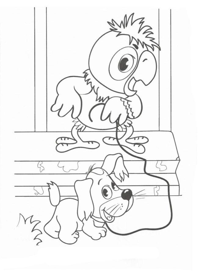 Раскраска попугай Кеша