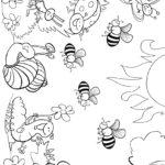 Раскраска разные насекомые