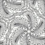 Раскраска ветка ёлки