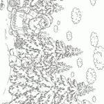 Раскраска ёлки в лесу