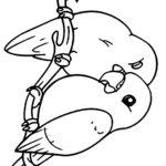 Раскраски попугай неразлучник