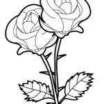 Раскраски розы красивые