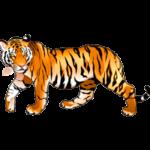 Раскраски тигры