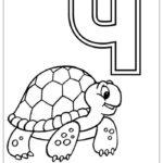 Азбука Ч с черепахой