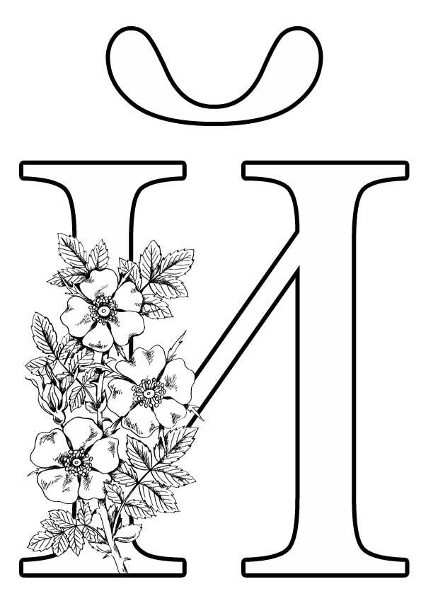 Буква Й с цветами
