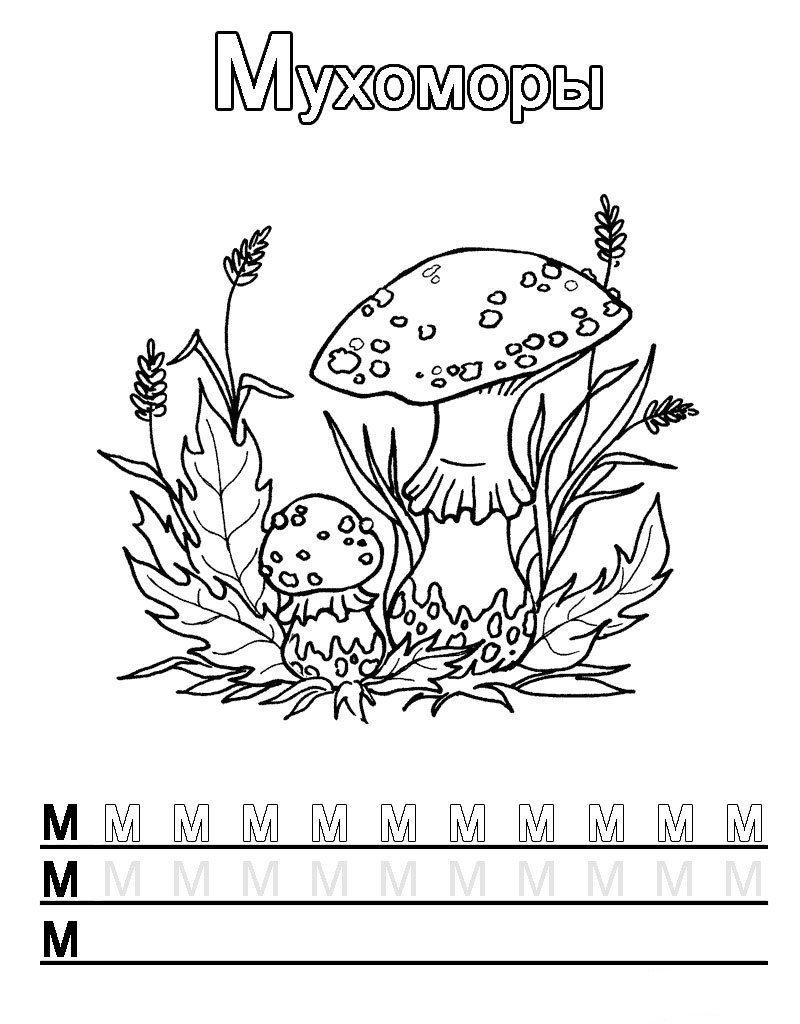 Буква М с мухоморами