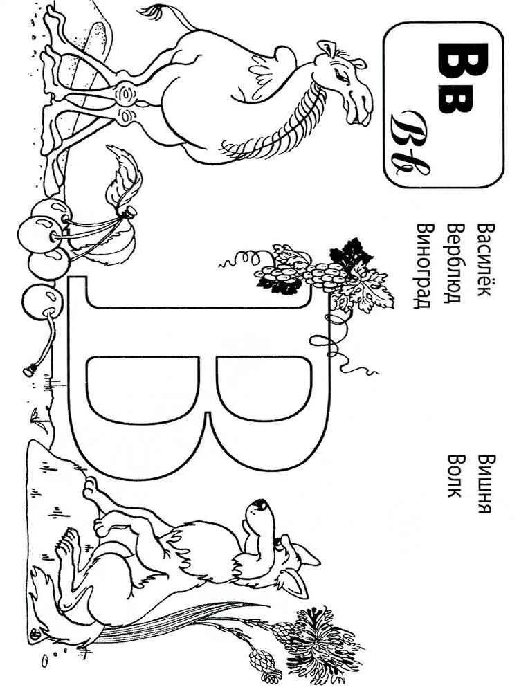 Буква В с верблюдом и волком