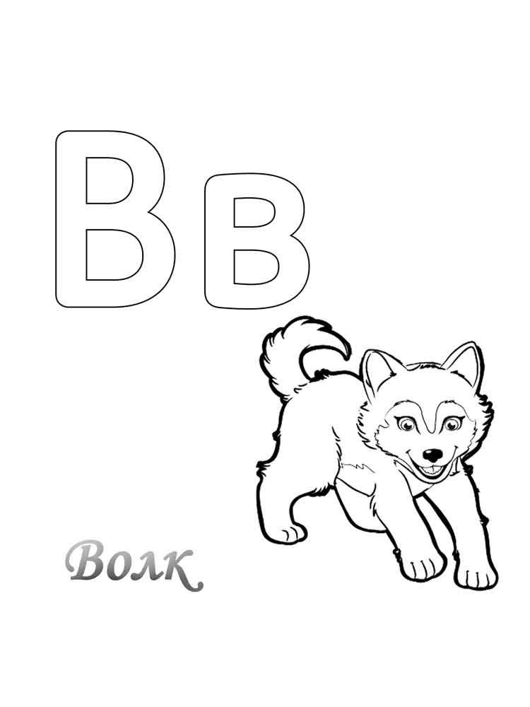 Буква В с волчонком