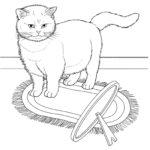 Раскраска Британская кошка