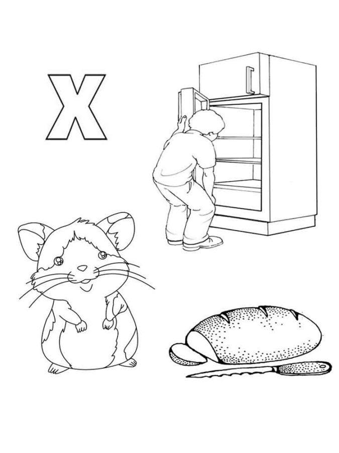 Буква Х с холодильником, хомяком, хлебом