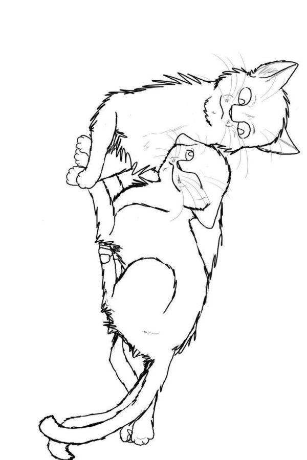 Раскраска кошка и кот Лео