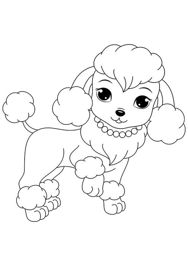 Милые собаки раскраска