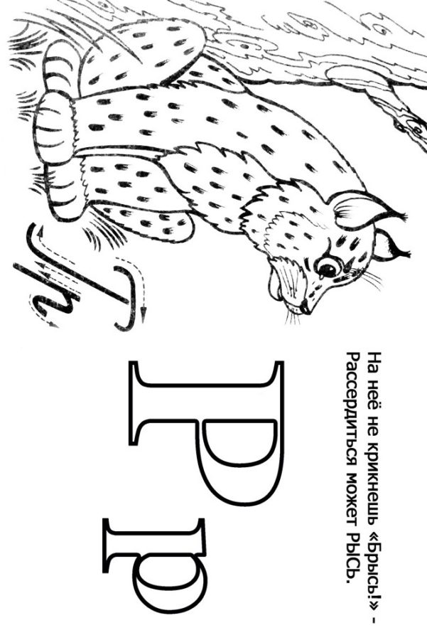 Буква Р пятнистой рысью