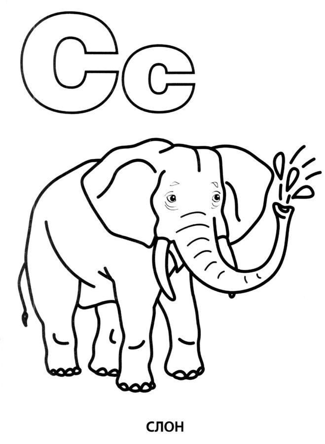 """Буква """"С"""" слоник"""