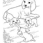 Раскраска собака и щенки