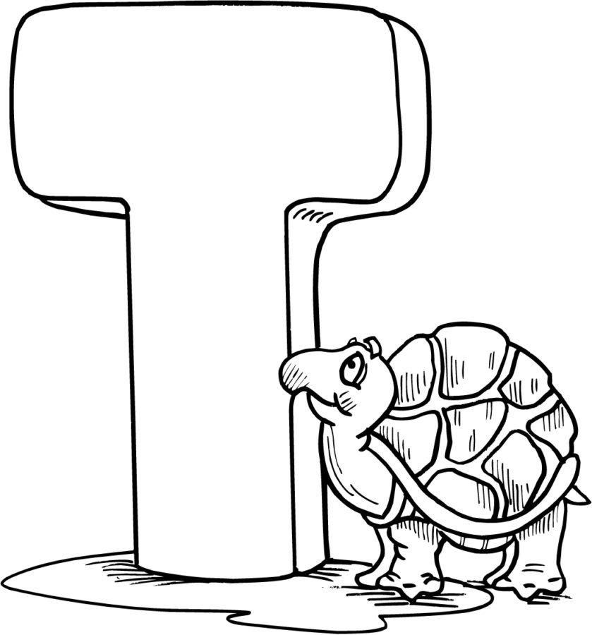 """Буква """"Т"""" черепаха Тортилла"""