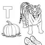 """Буква """"Т"""" с тигром, тыквой и туфлями"""