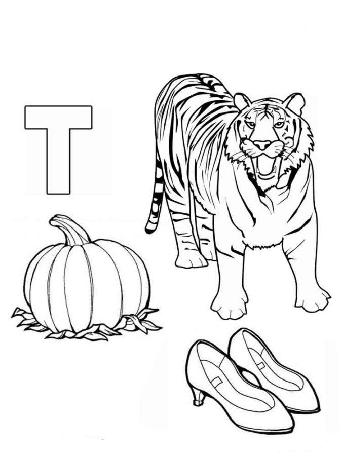 Буква Т с тигром, тыквой и туфлями