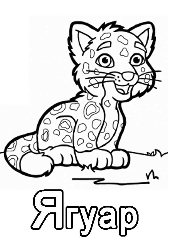 "Буква ""Я"" ягуар"