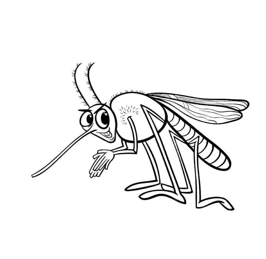Комар раскраска