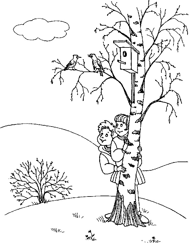 Осенняя берёза раскраска