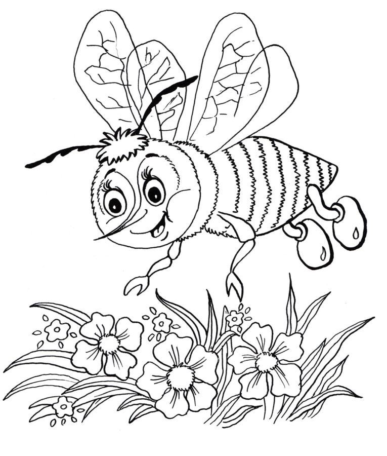 Пчела на цветке раскраска