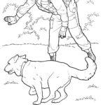 пограничник с собакой раскраска