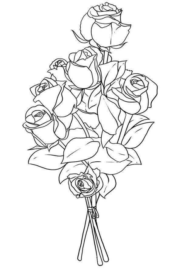 Раскраска белые розы