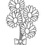 Раскраска цветок ромашка