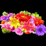 Раскраска цветы для детей