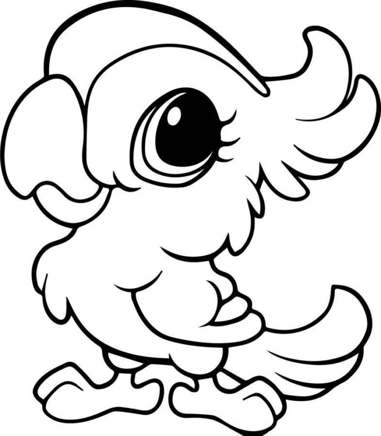 Раскраска милый попугай